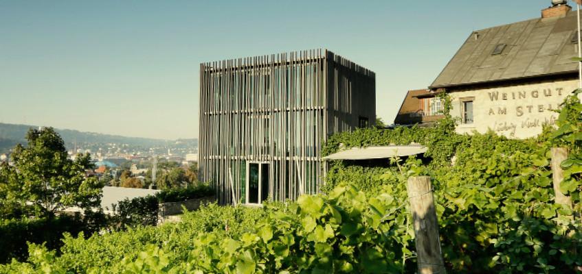 Weingut am Stein_Haus