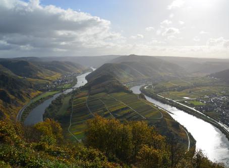 Een roadbook om met de VW California de Duitse wijnregio's te ontdekken
