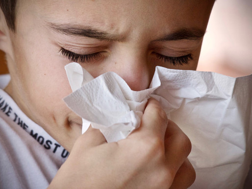 5 foods to help beat the cold/flu season blues