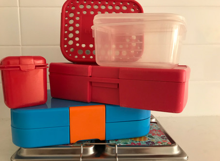 Choosing a Lunchbox:  Part 2 - The Pros & Cons of Different Lunchboxes