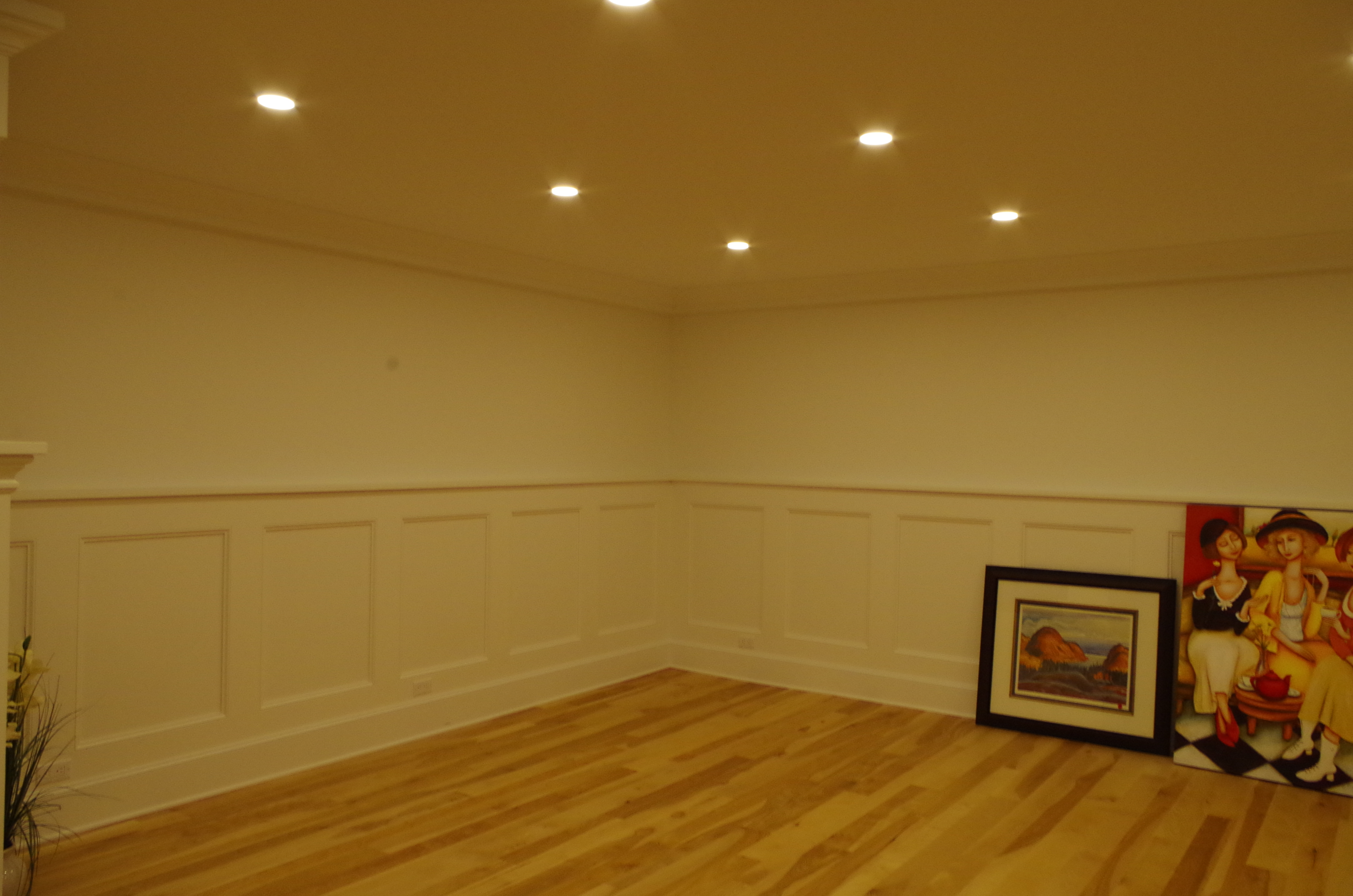 paneled wall ,led pot lights