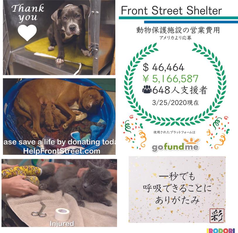 Front Street Shelter