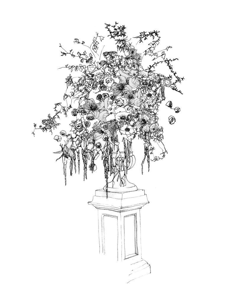 Ern drawing for website.jpg