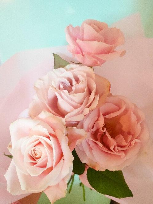 Pale pink Rosa bouquet