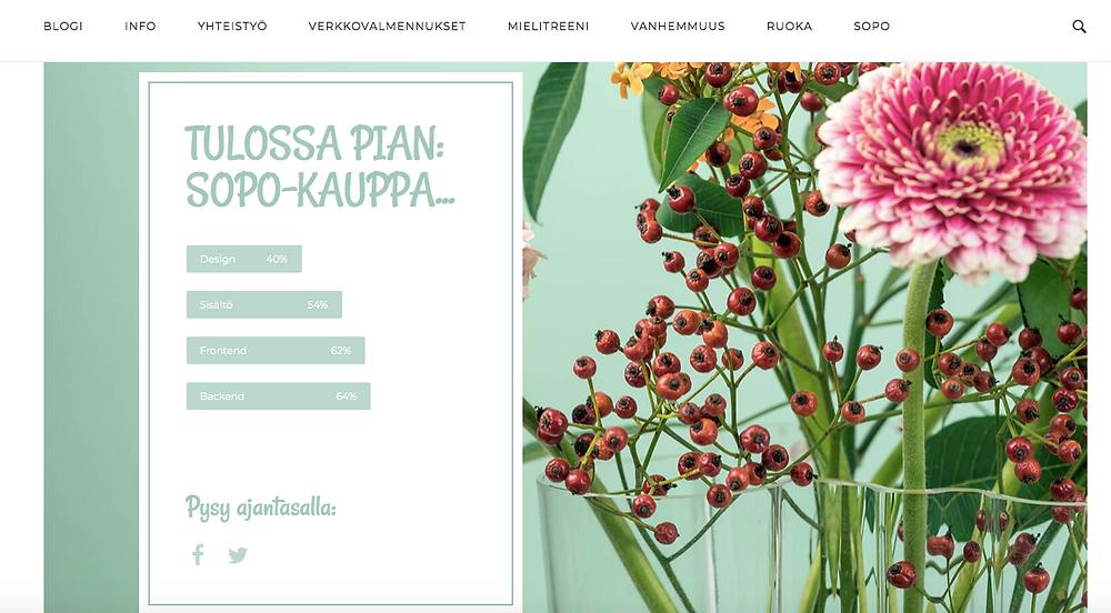 Maria Nordinin uusi blogi