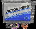 Reparo Unidad Injectora HPI Victor Reinz