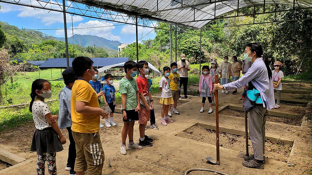 來自陳校長免費補習天地的小學生十分投入田務體驗活動,他們留心聆聽導師講解農務工具的用途和使用方法。