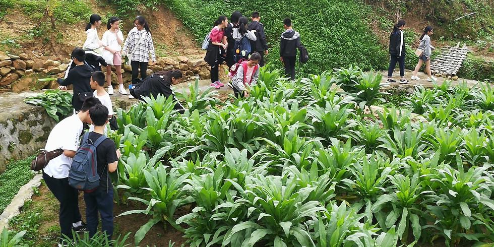 香港有機農耕學習團 2021