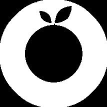 orange health logo transparent.png