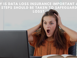 Why is Data Loss Insurance important and what steps should be taken to safeguard Data Loss?