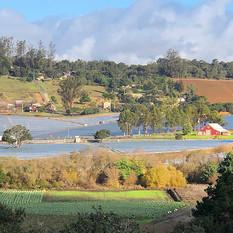 Beautiful-Farm-and-Plastic-KE-3.jpg