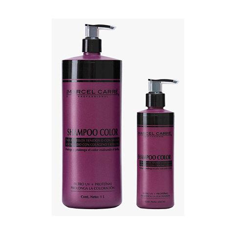 Shampoo Color para cabello teñido o con mechas