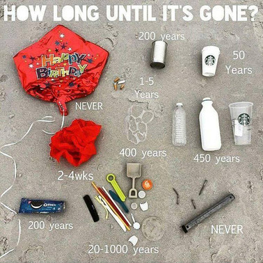 Plastic litter ends up in the sea