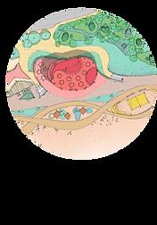 beach-green-cafe-survey.png