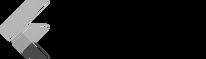 Google-flutter-logo copy.png