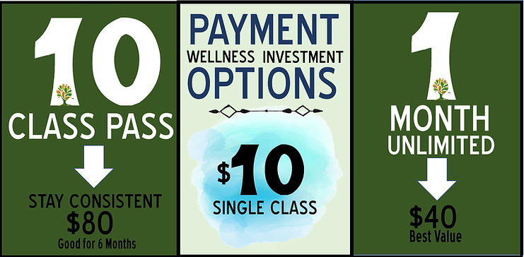 Craig.Online.Virtual.Classes.Payment.Opt