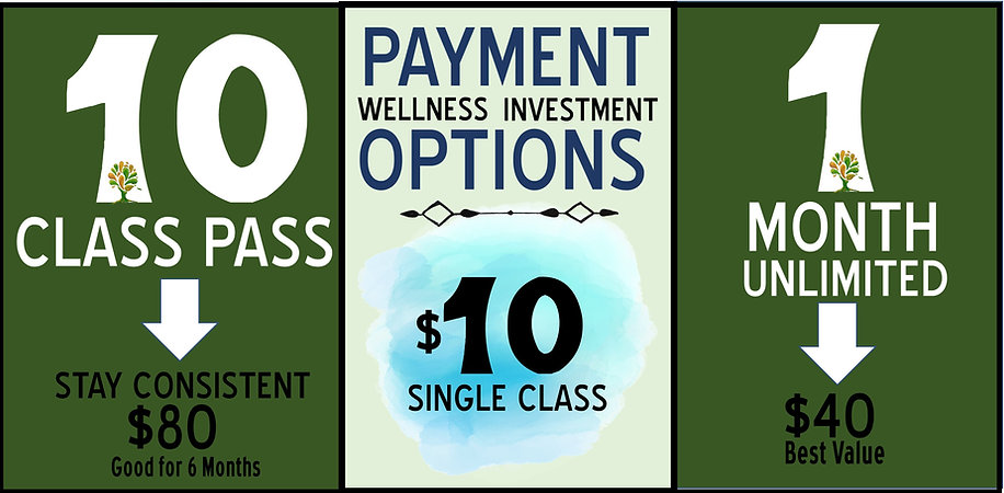 Craig.Online.Virtual.Classes.Payment.Opt