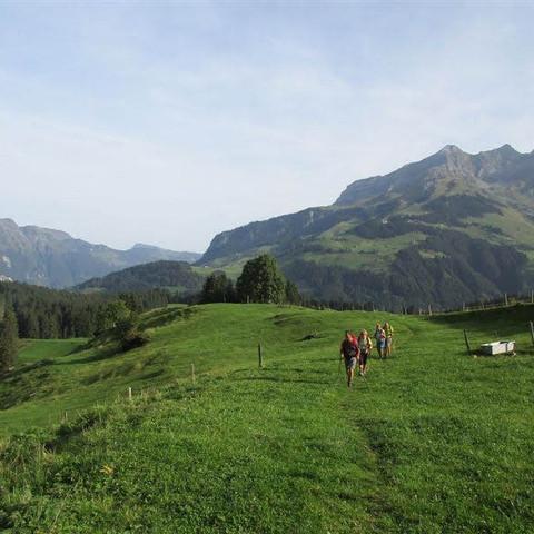 Via Alpina Verde