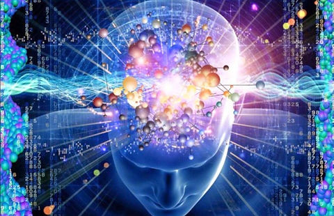 BrainPicture.jpg