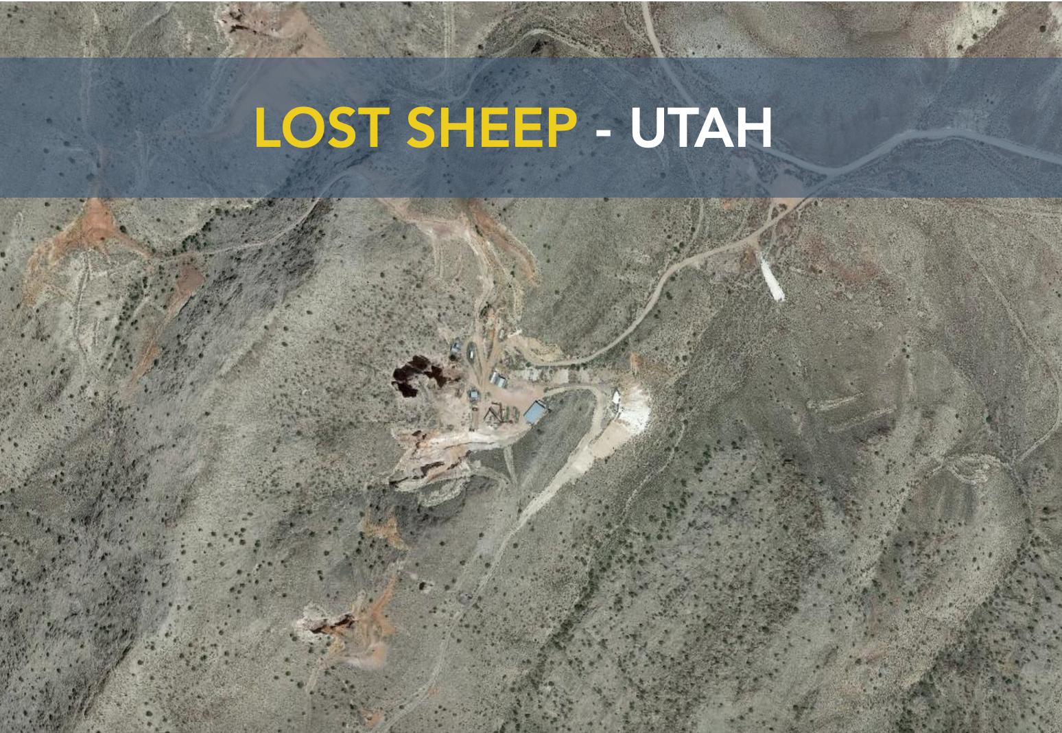 Lost Sheep - Utah