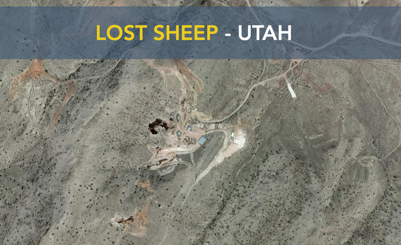Lost Sheep - Utah