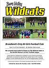 Wildcats Poster