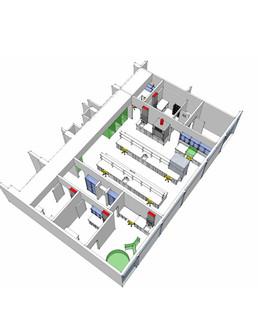 WSU Nursing Model.jpg