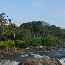 Munnar waters 1.JPG