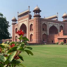 Taj Complex.jpeg