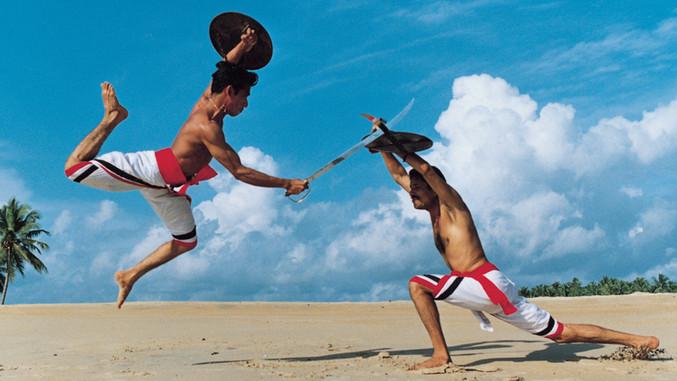 kalaripayattu, The Kerala Martial Arts