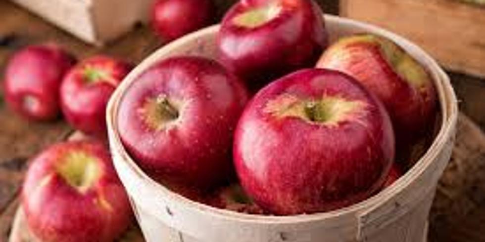 Autocueuillette de pommes et de citrouilles