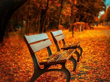 Comment profiter pleinement de l'automne ?