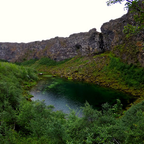 Islandský životík v plnom prúde