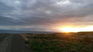 Island bejbe