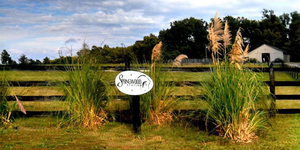 springwood sign