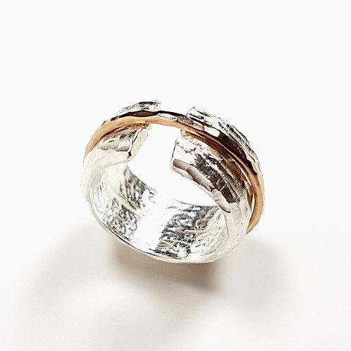 Silver with gold revolving ring Unated