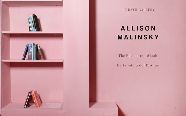 The Edge of the Woods, installation of title wall and artist curated guides * in the emblematically pink Le Bath Gallery, 2021 *refer to list below