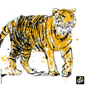awesome tiger.jpg