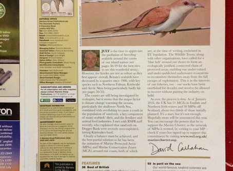 That time I was guest editor of Birdwatch magazine