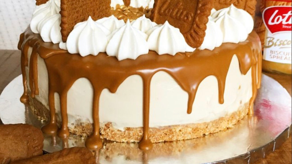 9in Biscoff Cheesecake