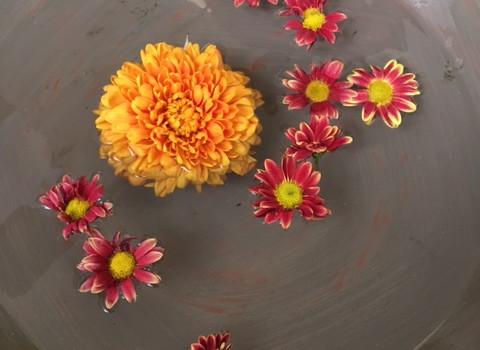 Flores flotantes.