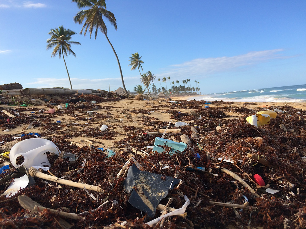 A photograph of a beach that is littered with plastic waste. There are Palm trees are swaying against a bright blue sky.
