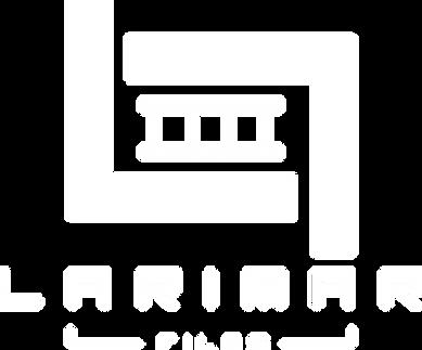 Logo_LF2020.png