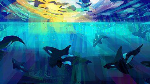 Orca light