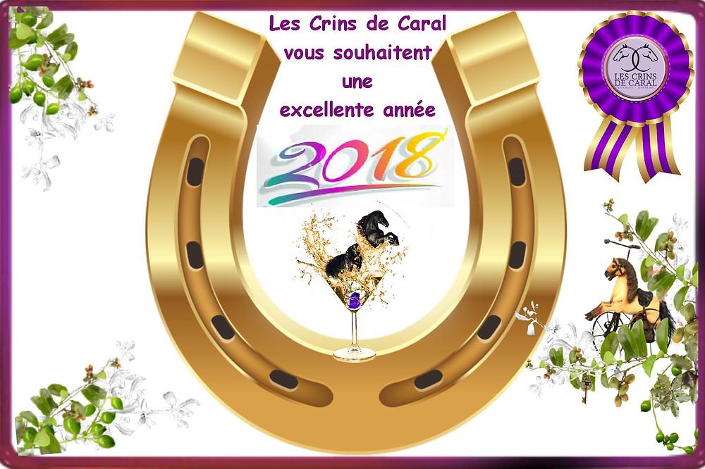Les Crins de Caral vous souhaitent une bonne année 2018