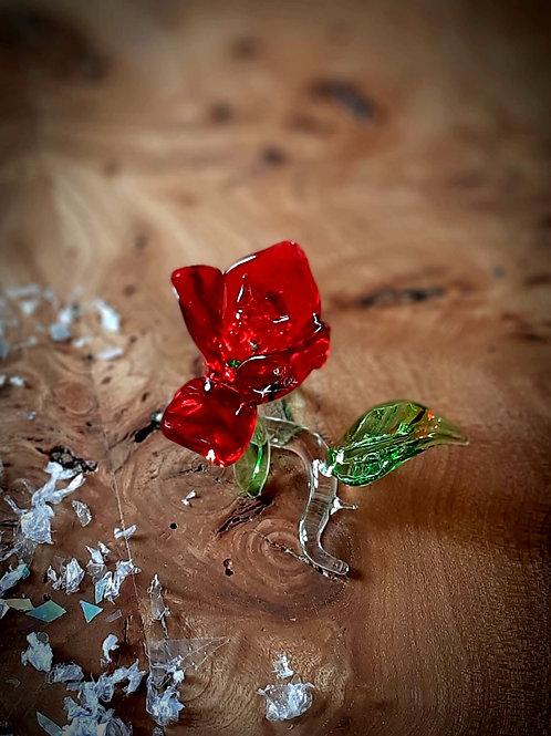 Rose de Verre