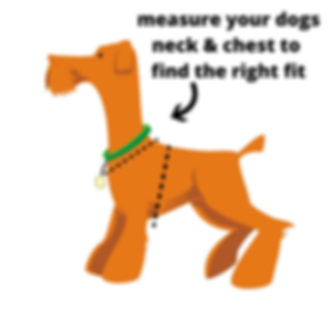 measure your dogs neck & chest to find t
