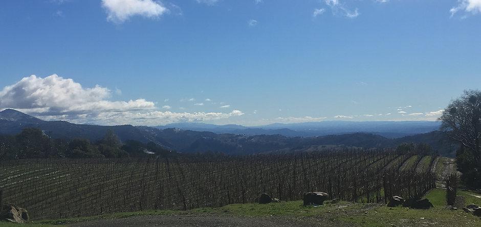 Imagery- Upper Ridge 2.JPG