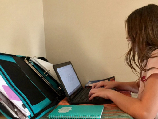 Virtual Learning: Preparing Our Youth