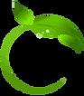 Logo%20Verde%20Foglia_vectorized_edited.